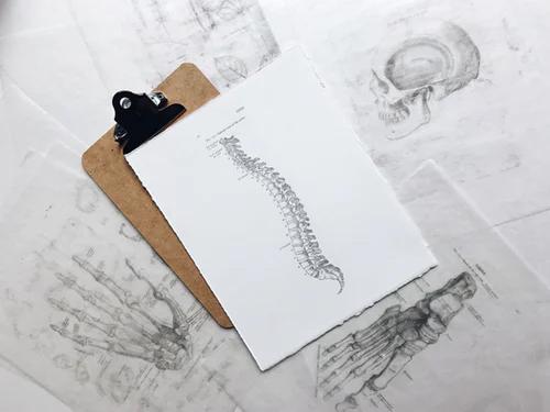Consultation - Laura Osteopathe Paris 8ème